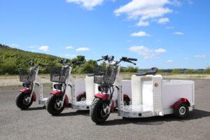 EuroScooter mit Kiste